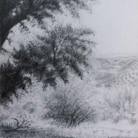 Paisaje de la Subbética 03 - Grafito 23x32 cm.