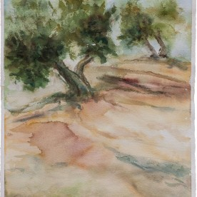 Olivos 1 - Acuarela 38x57 cm
