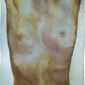Torso femenino ocres - Acuarela 38x42,5 cm.