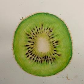 Kiwi - Gouache 32x46 cm.