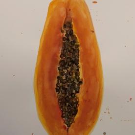 Papaya - Gouache 32x46 cm.