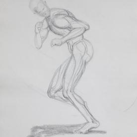Anatm14 - Lápiz 30x42 cm.