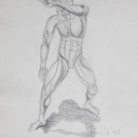 Anatm16 - Lápiz 30x42 cm.